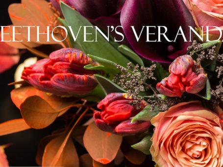 Beethoven's Veranda