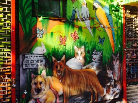 Whiskers Holistic Pet Store