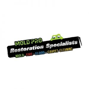 Mold Pro Water Removal Queens